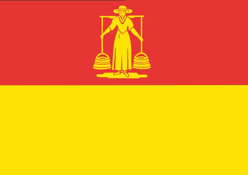 De vlag van Huizen