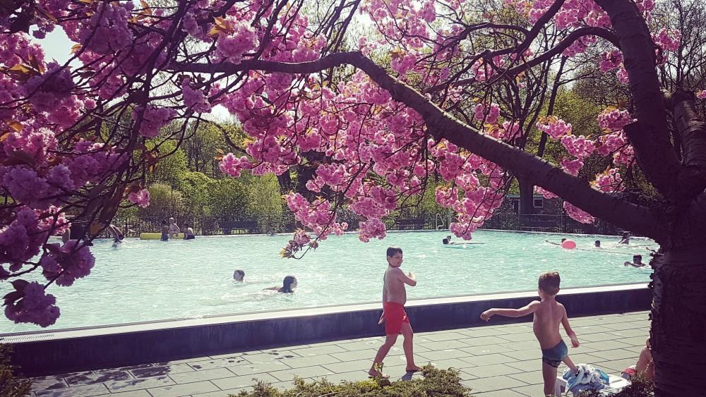 Na veel kritiek van zwemmers: door corona gesloten Huizer zwembad tóch open
