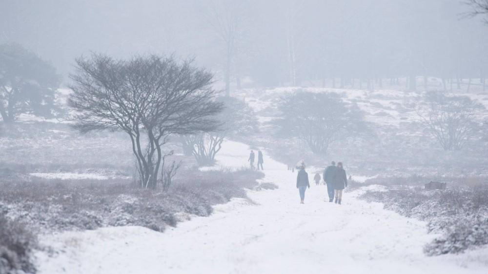 """Goois Natuurreservaat roept op na sneeuwval: """"Blijf op de paden lopen"""""""
