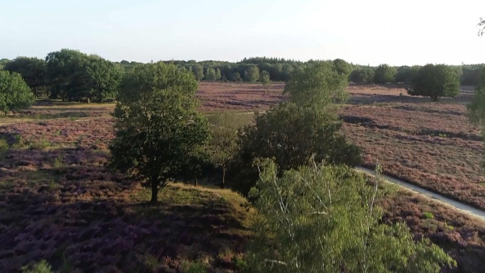 Gooise natuurgebieden blijven open voor bezoekers, tot het te druk wordt