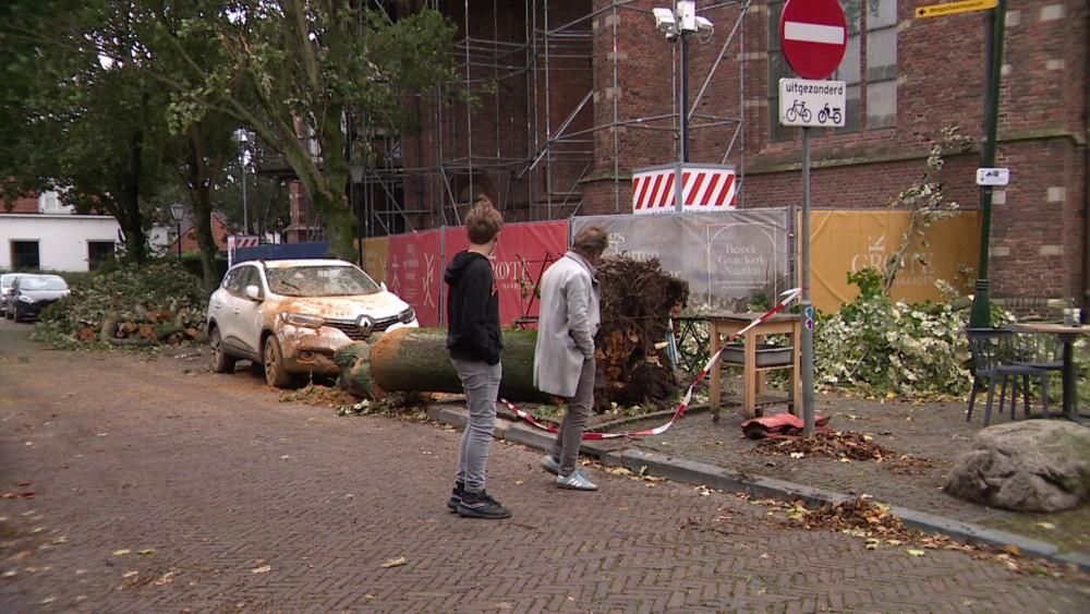 """Boom in Naarden viel met een """"enorme dreun"""" neer: """"Je weet niet wat je overkomt"""""""