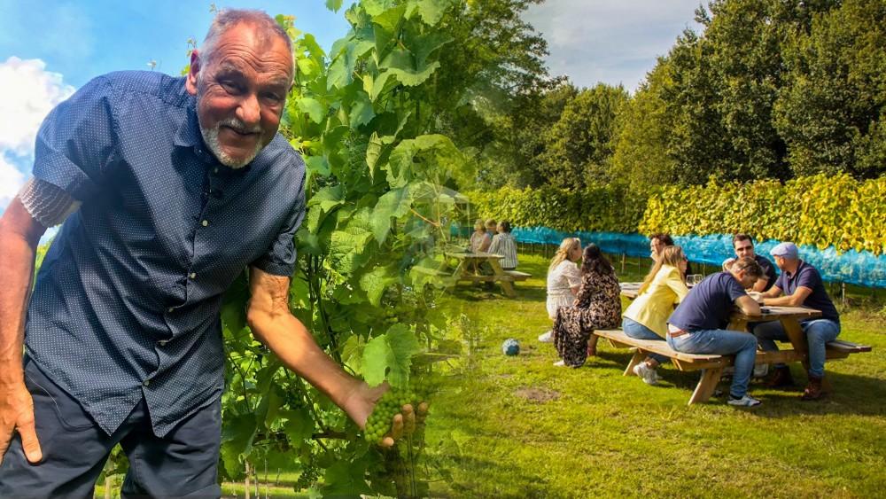 Alfreds droom gaat na zijn dood verder: zijn geliefde wijngaard is overgenomen