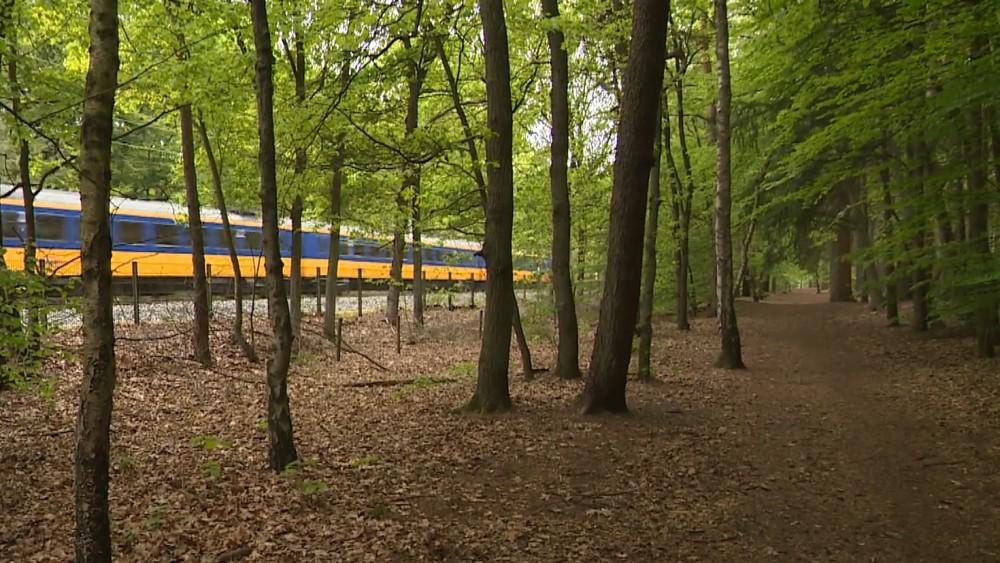 Natuurbrug over spoor bij Hilversum wordt stikstofarm gebouwd