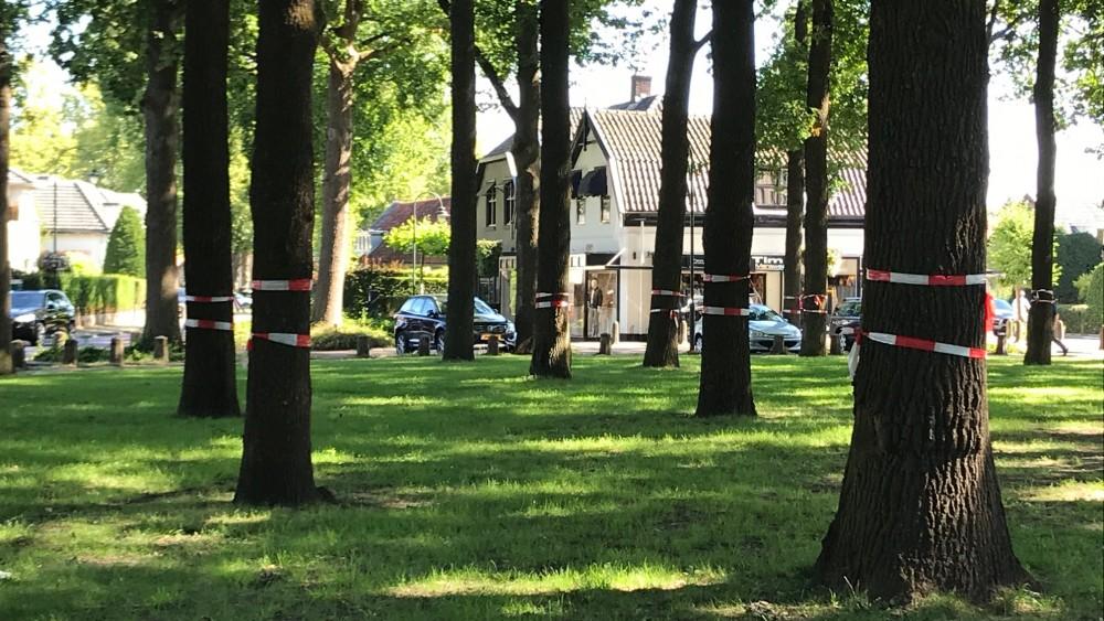 College Laren presenteert nieuw Brinkplan: bomen blijven en uiterlijk niet aangetast