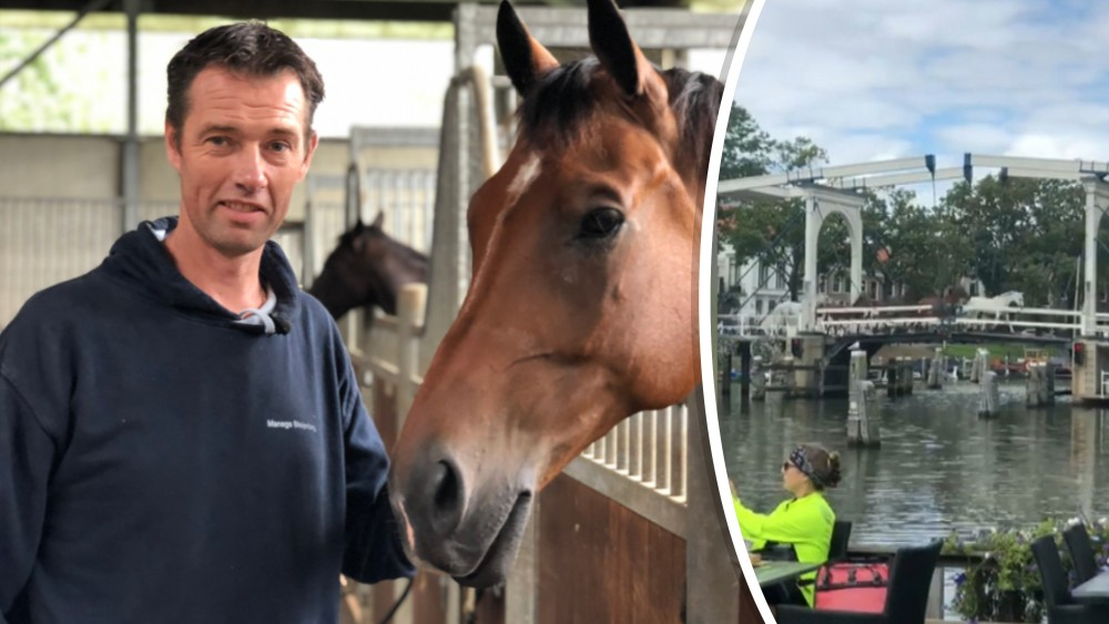 """Meer dan veertig paarden ontsnappen en galopperen door Weesp: """"Dat dit niet fout is gegaan"""""""