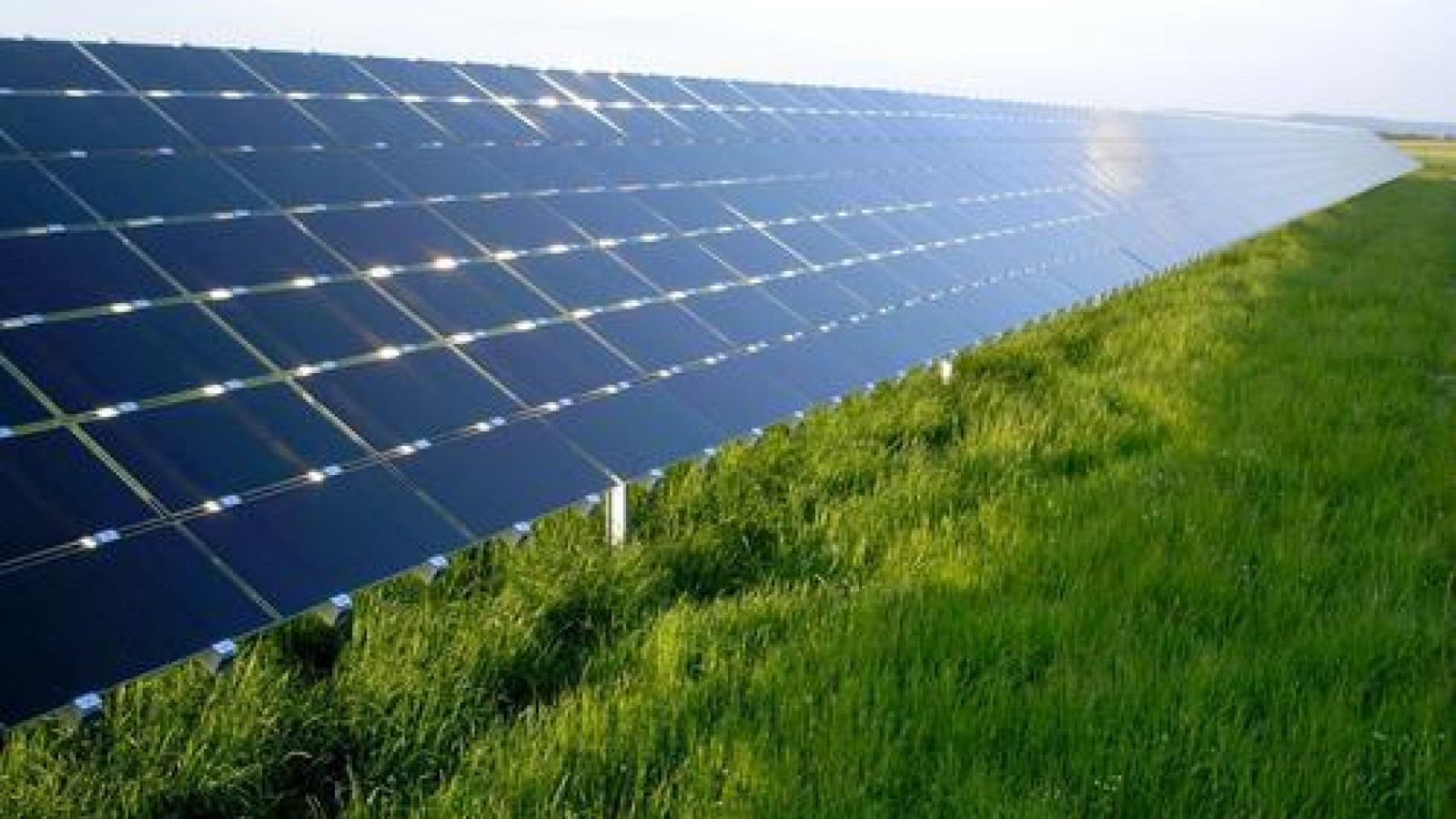 Goois Natuurreservaat: geen windmolens en zonneparken in onze natuur