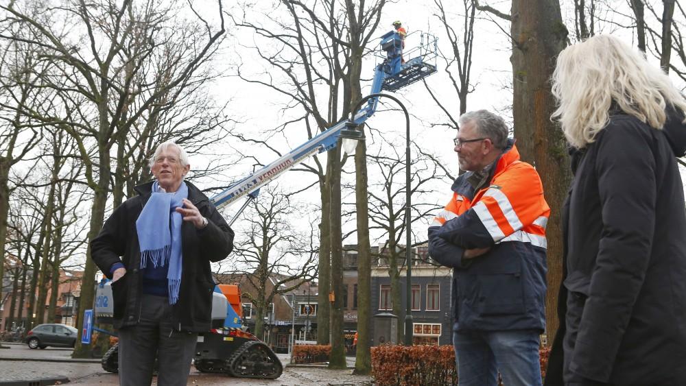 Grote onderhoudsbeurt voor bomen op Larense Brink van start