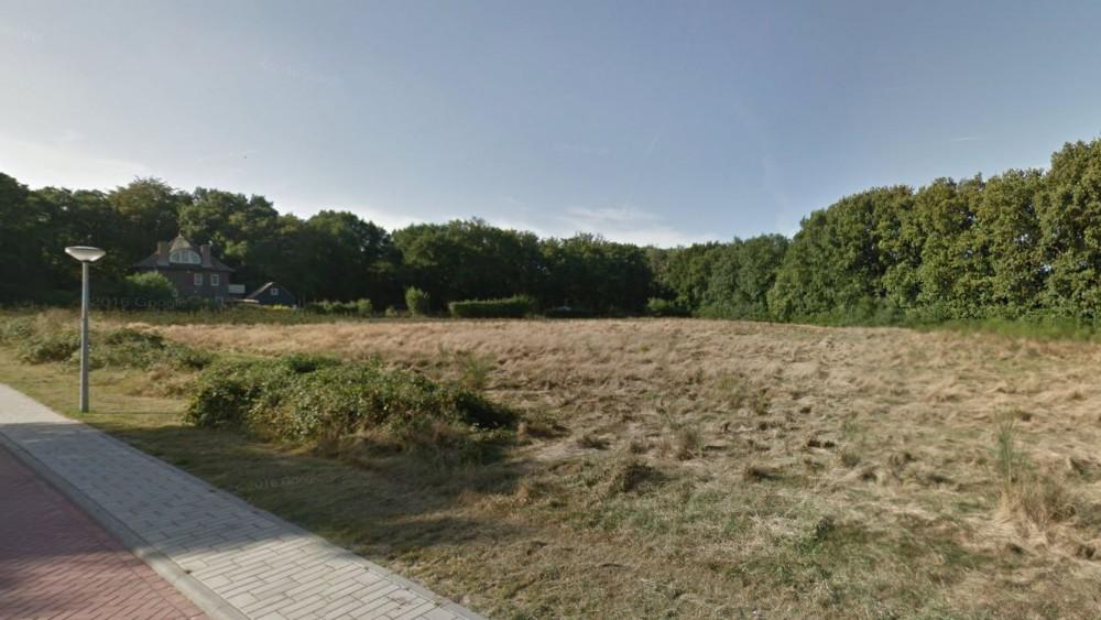 """Naarders en Huizers geschokt door plan voor woontoren in natuurgebied: """"Dit willen we niet"""""""