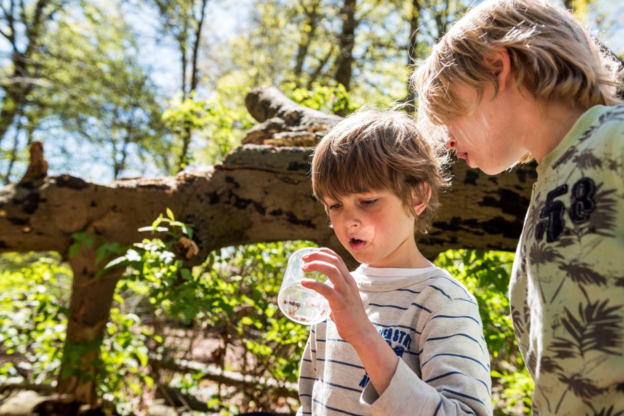 Foto: © Natuurmonumenten – Janko van Beek -