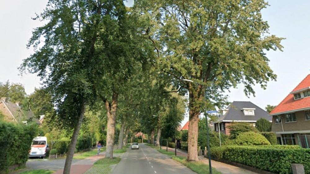 Bewoners boos om plotselinge bomenkap Nieuwe Bussummerweg
