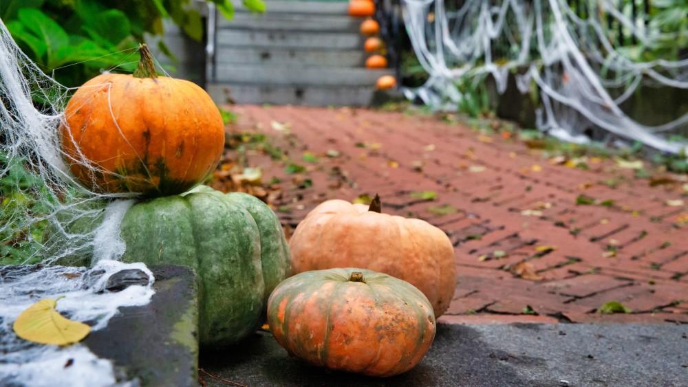 Hilversummers griezelen steeds vaker mee op speciale Halloween-route